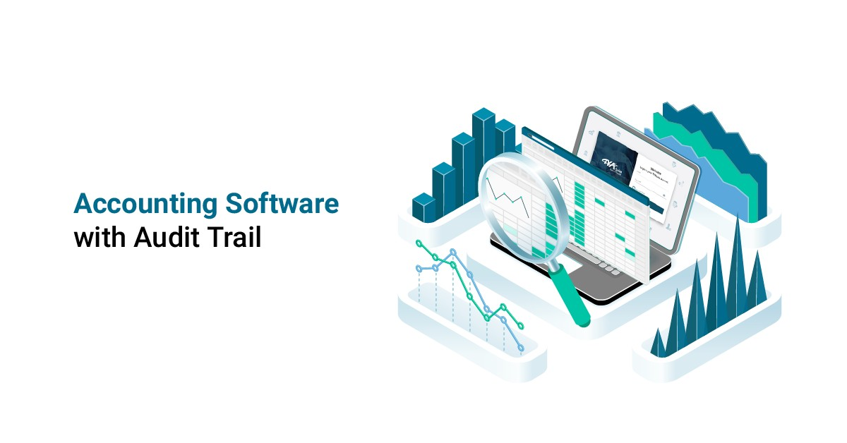 accounting software with audit trail